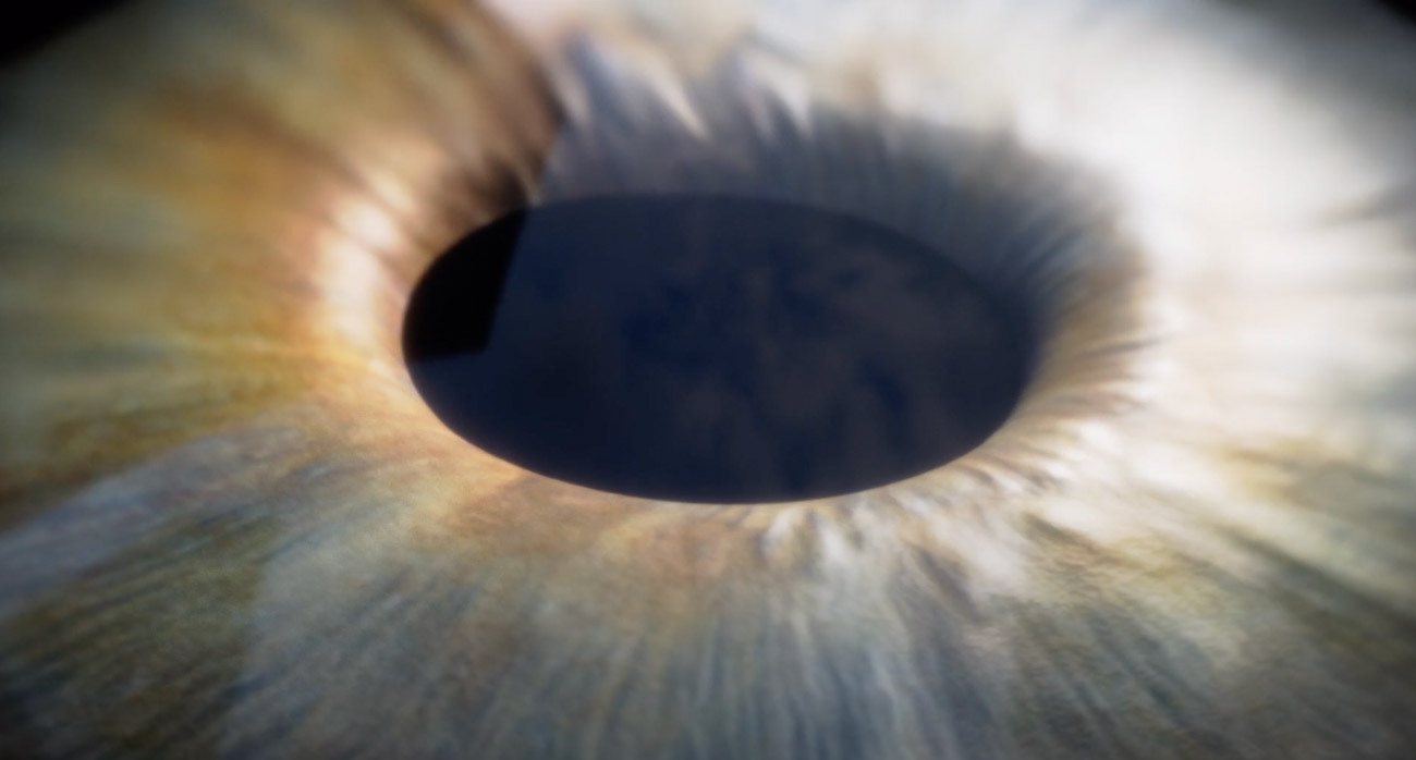 Close Up Image to the Eye